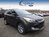 2015 Magnetic Metallic Ford Escape Titanium 4WD #100104065
