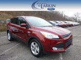2015 Sunset Metallic Ford Escape SE 4WD #100104061