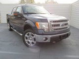 2014 Blue Jeans Ford F150 XLT SuperCrew 4x4 #100127940