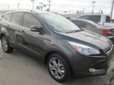 2015 Magnetic Metallic Ford Escape Titanium #100157349