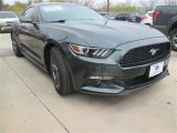 2015 Guard Metallic Ford Mustang V6 Coupe #100157344