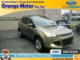 2013 Ginger Ale Metallic Ford Escape SE 1.6L EcoBoost 4WD #100208123