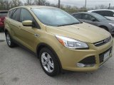 2014 Karat Gold Ford Escape SE 1.6L EcoBoost #100260453