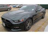2015 Ford Mustang Guard Metallic