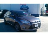 2014 Sterling Gray Ford Focus SE Sedan #100283903