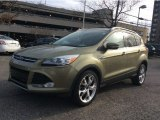 2013 Ginger Ale Metallic Ford Escape Titanium 2.0L EcoBoost 4WD #100284462