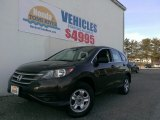2013 Kona Coffee Metallic Honda CR-V LX AWD #100382383