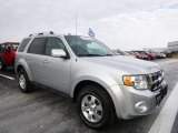 2012 Ingot Silver Metallic Ford Escape XLT 4WD #100381292