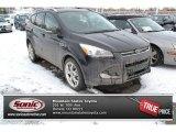 2013 Tuxedo Black Metallic Ford Escape Titanium 2.0L EcoBoost 4WD #100465554