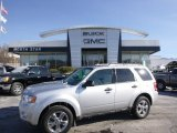 2012 Ingot Silver Metallic Ford Escape XLT 4WD #100521561