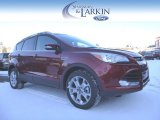 2015 Sunset Metallic Ford Escape Titanium 4WD #100612179