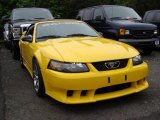 2004 Ford Mustang Saleen S281 Supercharged Convertible Data, Info and Specs