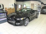 2015 Black Ford Mustang GT Premium Convertible #100751118