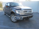 2014 Blue Jeans Ford F150 XLT SuperCrew 4x4 #100816076