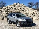 2004 Pewter Hyundai Santa Fe GLS #100816265