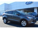 2015 Magnetic Metallic Ford Escape SE #101060569