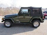 2006 Jeep Green Metallic Jeep Wrangler X 4x4 #101211950