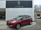 2013 Ruby Red Metallic Ford Escape SEL 2.0L EcoBoost 4WD #101286910