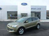 2013 Ginger Ale Metallic Ford Escape SE 1.6L EcoBoost 4WD #101323329