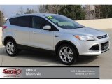 2013 Ingot Silver Metallic Ford Escape SEL 2.0L EcoBoost #101697122