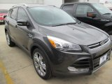 2015 Magnetic Metallic Ford Escape Titanium #101722004