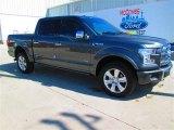 2015 Magnetic Metallic Ford F150 Platinum SuperCrew 4x4 #101826760
