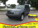 2002 Steel Blue Pearlcoat Jeep Grand Cherokee Laredo #101826652