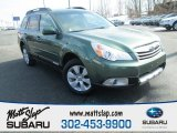 2012 Cypress Green Pearl Subaru Outback 2.5i Limited #101826953