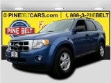 2009 Sport Blue Metallic Ford Escape XLT V6 #101907987