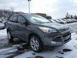 2015 Magnetic Metallic Ford Escape Titanium 4WD #101908159