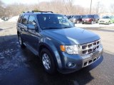 2010 Steel Blue Metallic Ford Escape Limited V6 4WD #102027883