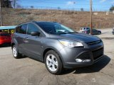 2014 Sterling Gray Ford Escape SE 2.0L EcoBoost 4WD #102050347