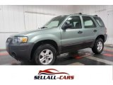 2006 Titanium Green Metallic Ford Escape XLS #102080754