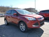 2015 Sunset Metallic Ford Escape SE 4WD #102189951