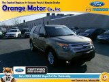 2013 Ginger Ale Metallic Ford Explorer XLT 4WD #102190039