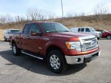 2014 Sunset Ford F150 XLT SuperCab 4x4 #102378674