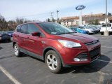 2015 Sunset Metallic Ford Escape SE 4WD #102439125