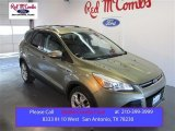 2013 Ginger Ale Metallic Ford Escape Titanium 2.0L EcoBoost #102469535