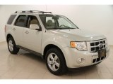 2009 Light Sage Metallic Ford Escape Limited V6 4WD #102469843