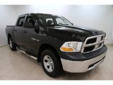 2010 Dodge Ram 1500 SLT Crew Cab 4x4 Data, Info and Specs