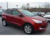 2013 Ruby Red Metallic Ford Escape SEL 1.6L EcoBoost #102509357