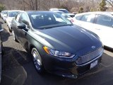 2015 Guard Metallic Ford Fusion SE #102730083