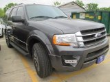 2015 Magnetic Metallic Ford Expedition XLT #102884388