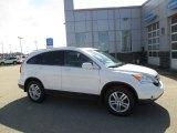 2010 Taffeta White Honda CR-V EX-L AWD #102966422