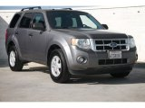 2011 Sterling Grey Metallic Ford Escape XLT #103082821