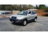 2004 Pewter Hyundai Santa Fe GLS 4WD #103241234