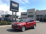 2014 Ruby Red Ford Escape Titanium 2.0L EcoBoost 4WD #103361767