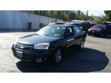 2007 Black Chevrolet Malibu LT Sedan #103398661