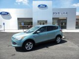 2013 Frosted Glass Metallic Ford Escape SE 1.6L EcoBoost 4WD #103519245