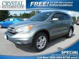2010 Opal Sage Metallic Honda CR-V EX-L #103587130